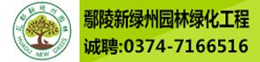 鄢陵新绿州园林绿化工程有限公司-鄢陵人才招聘